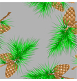 Seamless texture with fir cones vector image