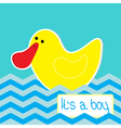 Baby boy shower card with funny duck vector image vector image