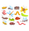 Cartoon insects fly bug cute butterfly and