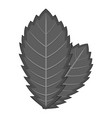 elm leaf icon monochrome vector image vector image
