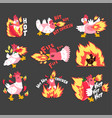 hot spicy chicken set rooster on fire creative vector image vector image
