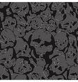 jeans skulls vector image vector image