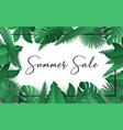 summer sale banner poster tropical leaves design vector image