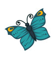 amazing blue butterfly with yellow pattern and vector image vector image