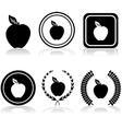 Apple emblems vector image vector image
