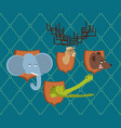 hunter trophy set elephant and bear head moose vector image