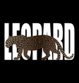 leopard t-shirt fashion print with leopard vector image vector image