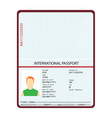 passport with biometric data identification vector image vector image