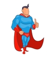 Superhero giving thumbs up icon cartoon style vector image