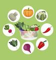 vegetables fresh ingredients vegetarian food vector image vector image