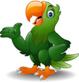 cartoon green parrot presenting vector image vector image