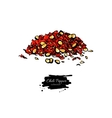 Chili Pepper hand drawn of vector image vector image