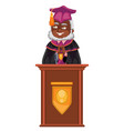 class of 2019 congrats flat colorful poster with vector image vector image