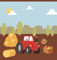 harvesting autumn farm crops with tractor vector image vector image