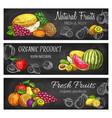 natural fresh fruits sketch banners set vector image vector image