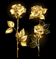 Set of Golden Roses vector image vector image