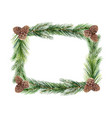 watercolor green spruce frame with cones vector image vector image
