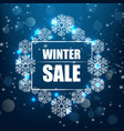 winter sale banner background vector image vector image
