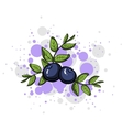 BlueberryStyle vector image