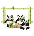 border template with cute panda and bamboo vector image vector image