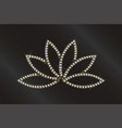 luxury lotus plant image vector image