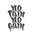 no pain no gain hand lettering phrase design vector image