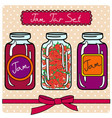 set of retro jam jars vector image
