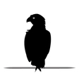 Silhouette of Eagle black vector image