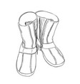 sketch of shoes vector image