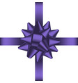 bow with ribbon 1 vector image vector image