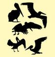 pelican birds silhouette vector image vector image