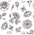 roses seamless pattern hand drawn rose floral vector image
