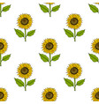 seamless pattern with yellow hand drawn sunflowers vector image
