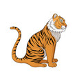 sitting tiger side view vector image vector image
