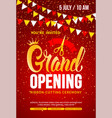 template for advertising poster grand opening vector image