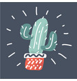 cactus in pot on dark background vector image
