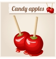 Detailed Icon Candy apples vector image vector image