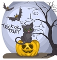 Halloween Background With Pumpkins Moon And Cat vector image vector image