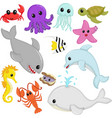 marine wildlife animals vector image