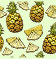 pineapple seamless pattern exotic summer fruit vector image