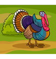 turkey farm bird animal cartoon vector image