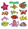 Cartoon Funny Fish Sea Life Colored Doodle vector image