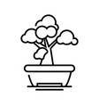 bonsai tree line icon concept sign outline vector image