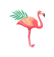 bright of flamingo with palm tree vector image vector image