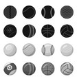 design of sport and ball icon set of sport vector image vector image