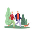 dog owners elderly couple walking with puppy vector image vector image