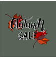 hello autumn sale text poster of leaf fall vector image vector image