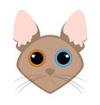 isolated cute cat avatar vector image
