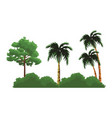 trees nature landscape vector image vector image