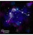 aquarius constellation with triangular background vector image